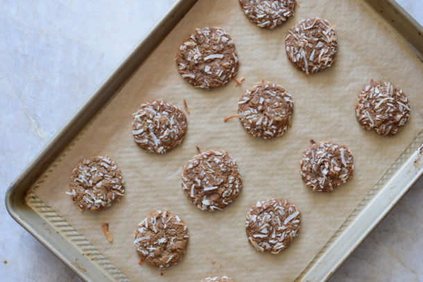 Molasses-Ginger Cookies | Pamela Salzman