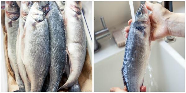 rinse fresh fish