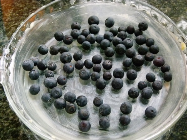 grease your pan and scatter the blueberries on the bottom