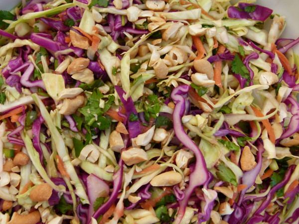 asian slaw | pamela salzman