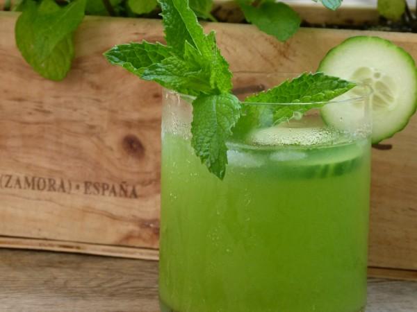 mint, cucumber, and vodka cocktail | pamela salzman