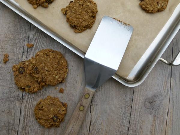 vegan pumpkin oatmeal spice cookies | pamela salzman