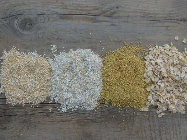 Mixed grains for porridge