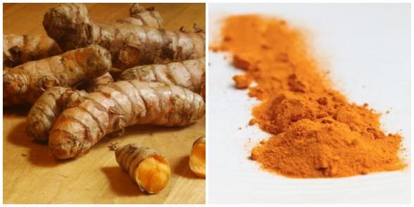 fresh and dried turmeric