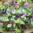 the perfect spring salad recipe