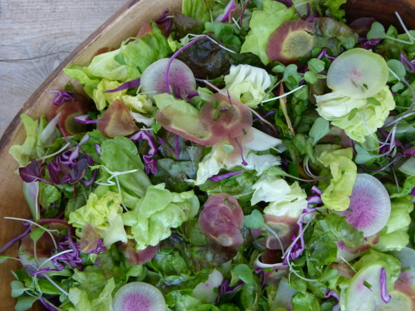the perfect spring salad | pamela salzman