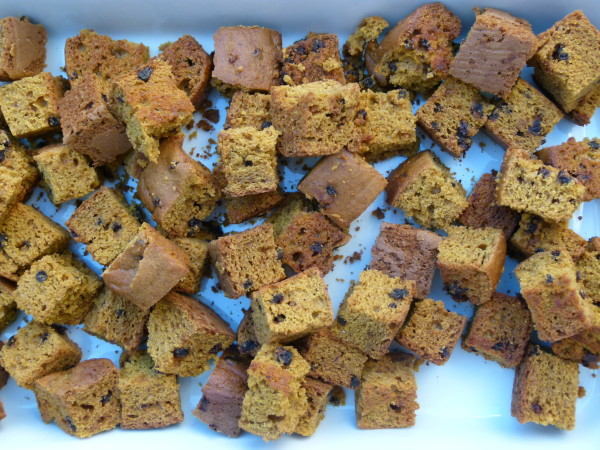 cubed pumpkin bread