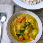 chicken and vegetable curry | pamela salzman