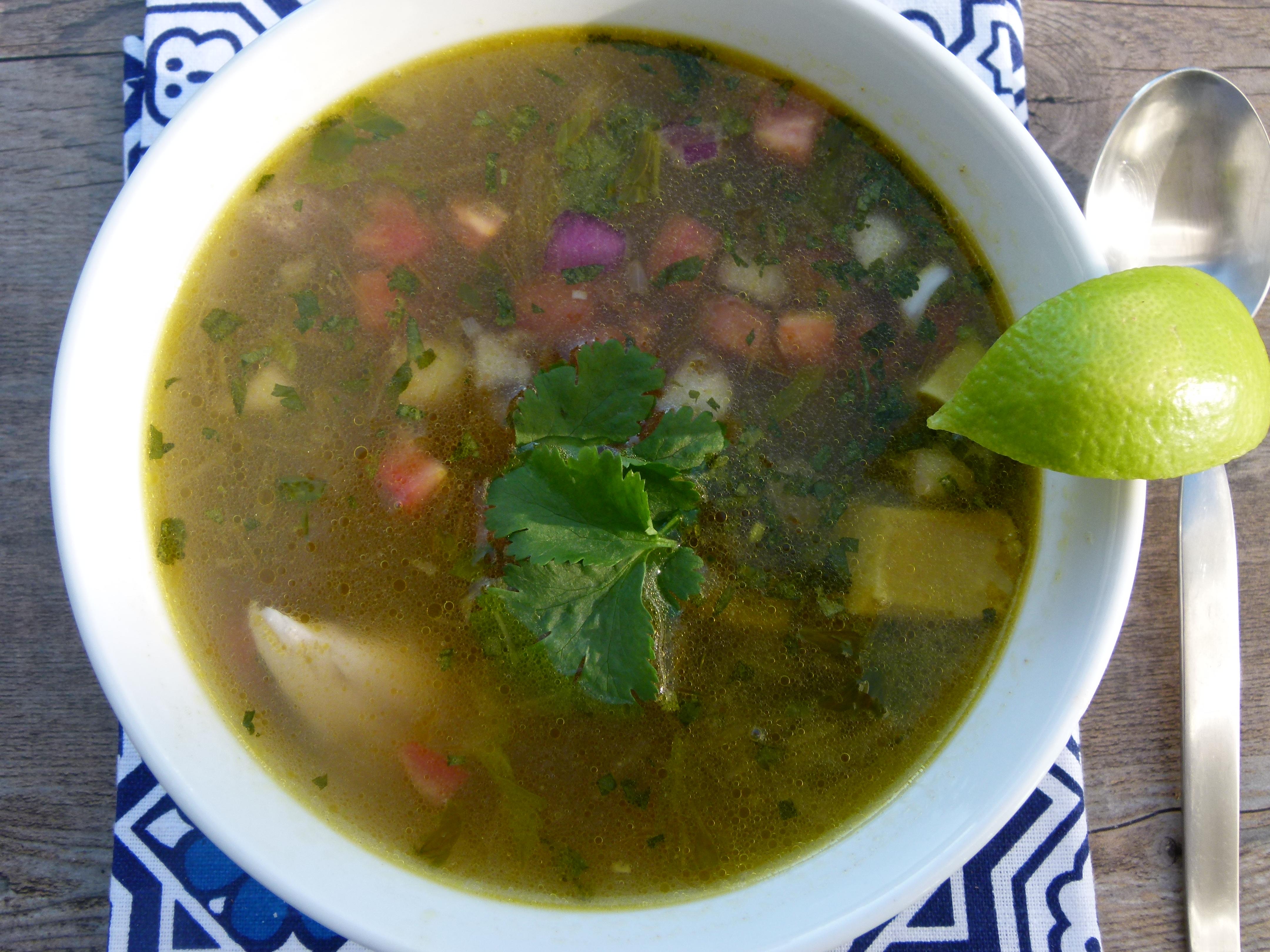 Chicken and Avocado Soup | Pamela Salzman & Recipes