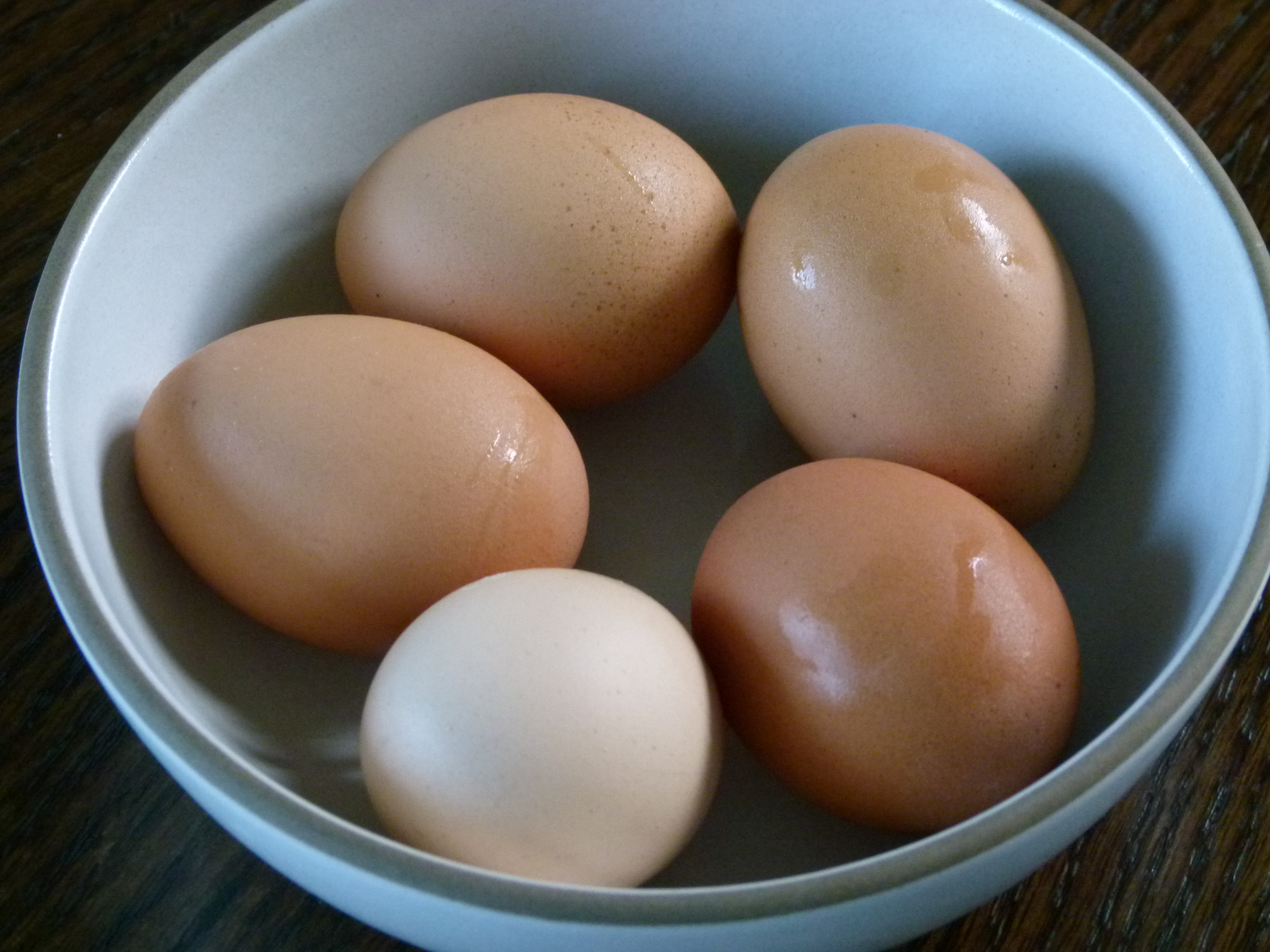 I Imagine Many Of You Are Getting Ready To Boil Eggs This Week, Either To  Decorate For Easter Or To Include At A Passover Seder I Loved The Annual  Event Of