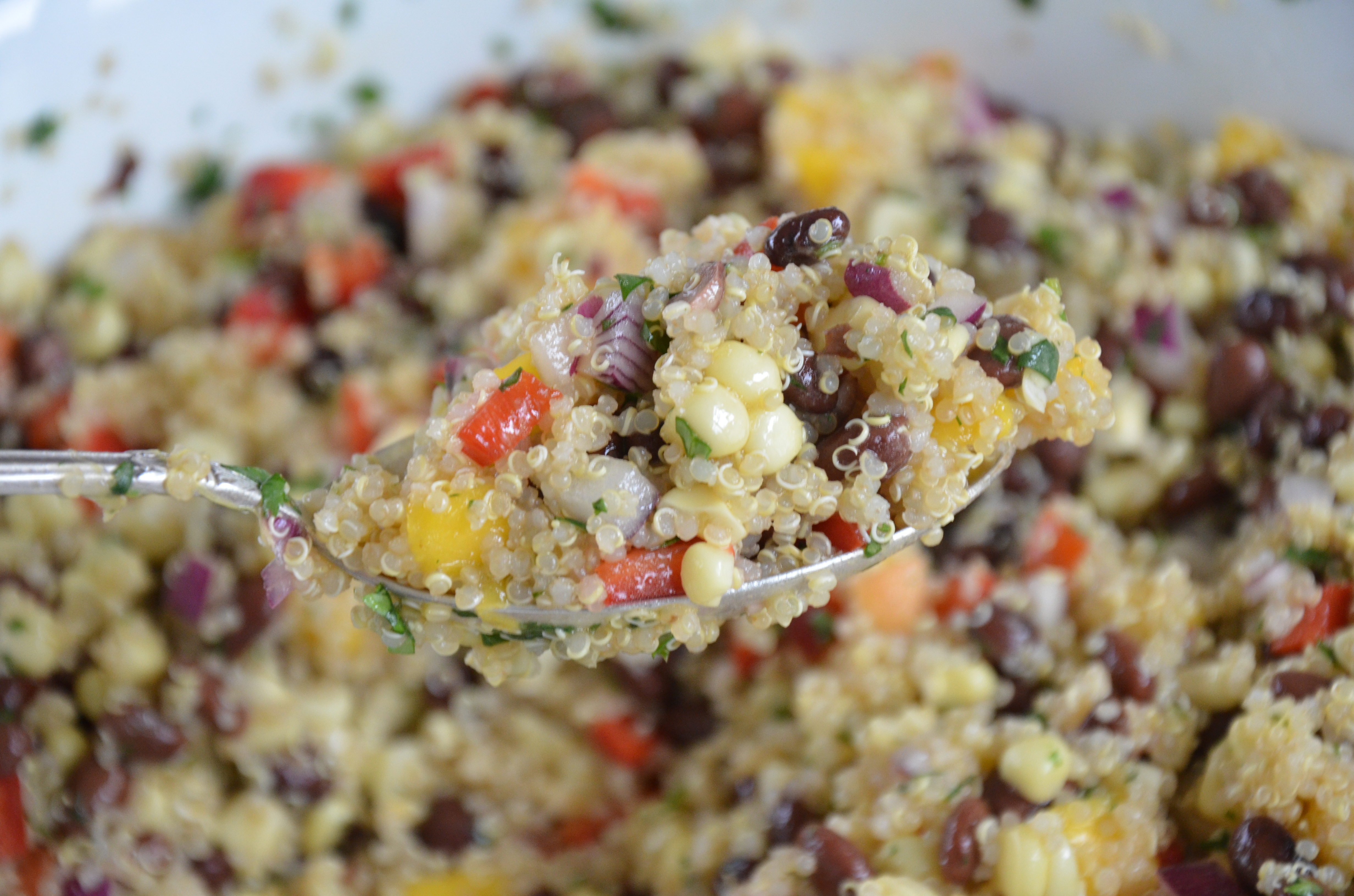 Southwestern Quinoa Salad Recipe Pamela Salzman Amp Recipes