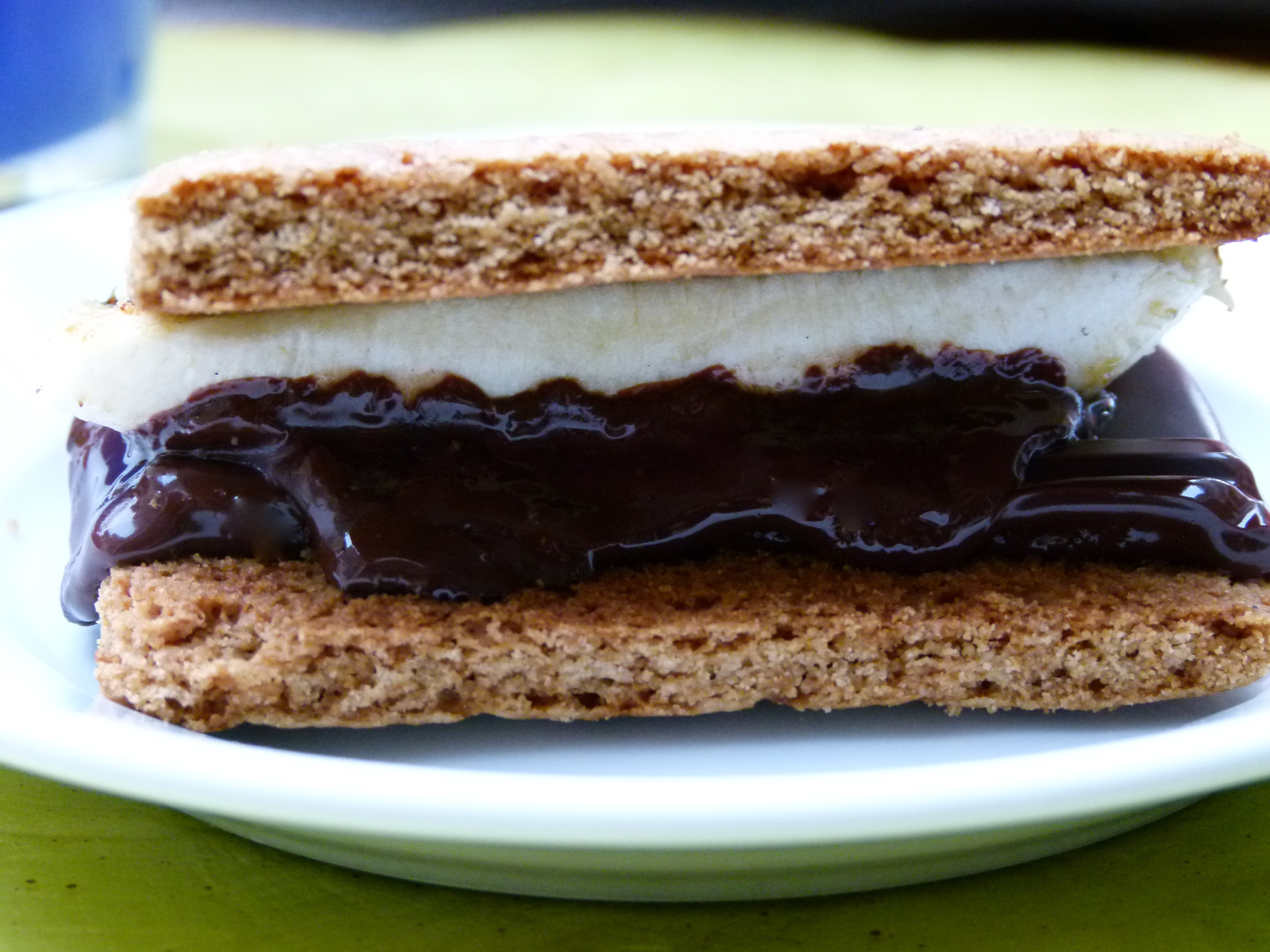 grilled banana s'mores recipe | Pamela Salzman & Recipes