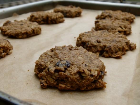 pumpkin oatmeal spice cookies | pamela salzman