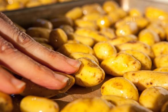 baby fingerling potatoes