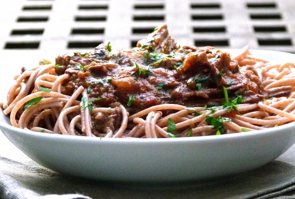 pasta with shredded grass-fed beef brisket
