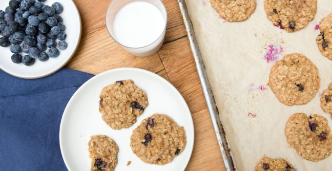 Blueberry Oatmeal Cookie Recipe